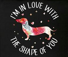 Dressing Doggy Up For Halloween Dachshund Art, Dachshund Puppies, Weenie Dogs, Daschund, Doggies, I Love Dogs, Puppy Love, Kawaii, Hot Dogs