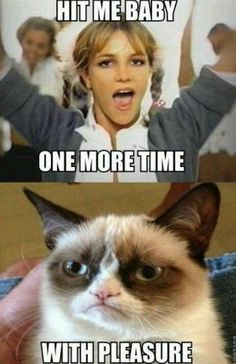 One more time. with pleasure! Funny Cat Quotes - Grumpy Cat - Ideas of Grumpy Cat - One more time. with pleasure! Funny Cat Quotes The post One more time. with pleasure! Funny Cat Quotes appeared first on Cat Gig. Grumpy Cat Quotes, Funny Grumpy Cat Memes, Funny Disney Jokes, Cat Jokes, Funny Cats, Funny Memes, Funny Minion, Weird Cats, Song Memes