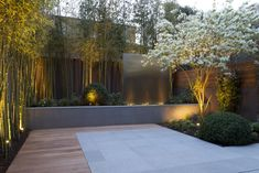 Contemporary design of a small court yard with bamboo and Amelanchier