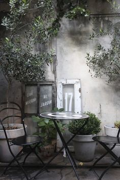 Secret courtyard garden | Gardenista