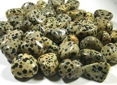Dalmation Stone is commonly found in Mexico. It is a calming stone that is great for relationships and letting go of the past. It protects from physical danger and connects physical and spiritual energy. It is good for happiness and devotion and helps cartilage, stamina, nerves, muscle sprains and cramps.  Dalmation Stone balances your yin/yang and helps with negativity