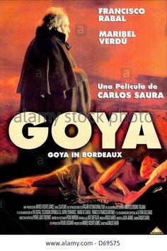 Aos 82 anos, exiliado en Burdeos con Leocadia Zorrilla de Weiss, a última das súas amantes, o pintor Francisco de Goya reconstrúe para a súa filla Rosario os acontecementos que marcaron a súa vida. Unha vida na que se suceden convulsions políticas, paixóns e o éxtasis da fama.