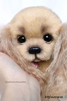 Oh My Goodness, will you look at ths artist moair Cocker Spaniel?? My favorite breed....so yes, I need it!!! Ludmila Donodina Creation.