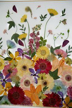 http://floralies.com.au/resources/Framed%20floral%20designs%203%20c.jpg More