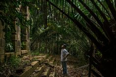 'Hermit of the Jungle' Guards a Brazilian Ghost City Rich in History - NYTimes.com - This is Airão Velho, an abandoned town NW of Manaus, Brazil (map in article)