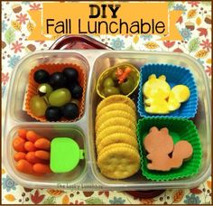 The Lucky Lunchbox/ DIY Fall Lunchable packed in the @easylunchboxes
