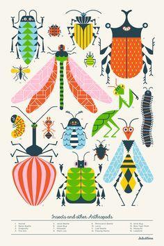 Coloriage 10 dessin insecte insectes pinterest dessin insecte coloriage et dessin - Coloriage petit scientifique ...