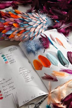 Feathers in Haute Couture Design of notebook containing a list of materials, colours and dye references, as well as feather samples. Designer: Nellie Saunier: Photo Credit: Alexis Lecomte.