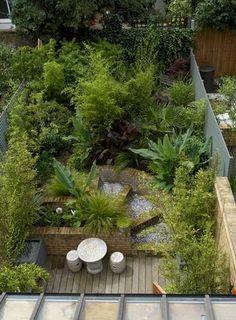 jardín-selvático-vista