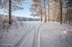 Зима на канале имени Москвы.(39)