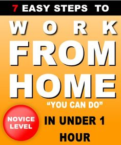 How To Work From Home & Make Money Online $4.99