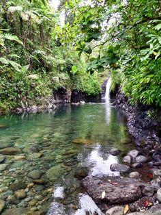 Fiji - Tienes que nadar los últimos metros a esta magnífica cascada.  Es fresco, refrescante y perfectamente claro.