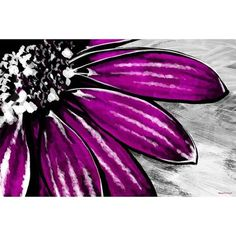 Maxwell Dickson 'Purple Petals' Floral Flower Painting Print on Wrapped Canvas Size: Painting & Drawing, Painting Prints, Oil Paintings, Flower Paintings, Painting Flowers, Yellow Painting, Wine And Canvas, Pics Art, Painting Inspiration