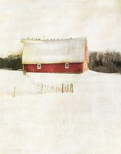 milk and berries... by jamie heiden
