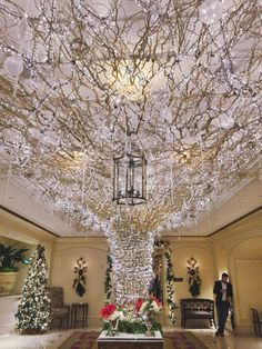 15 Christmas-y things to do in New Orleans throughout the holidays Christmas Things To Do, Christmas Love, Christmas Goodies, Christmas Carol, New Orleans Hotels, New Orleans Travel, Holiday Lights, Christmas Lights, Christmas Decorations