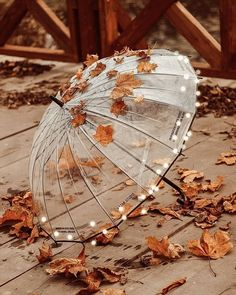 Digital Art Beginner, Baby Buddha, Autumn Illustration, Fall Color Palette, Autumn Scenery, Autumn Cozy, Autumn Aesthetic, Autumn Photography, Vintage Photography