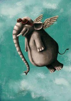 Elefant volador, César Samaniego