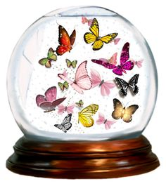 """""""Butterfly Snow globe"""" by bookreader17 ❤ liked on Polyvore featuring art"""