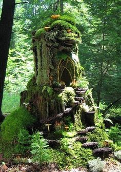 .stump fairy garden