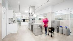 Hospital Veterinário Constitución / Dobleese Space & Branding