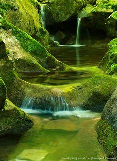 Moss Pond to enjoy....wow