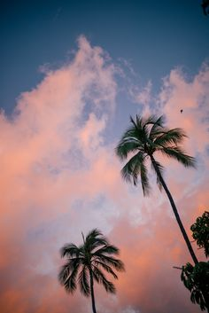 Pink sunset in Lahaina, Maui