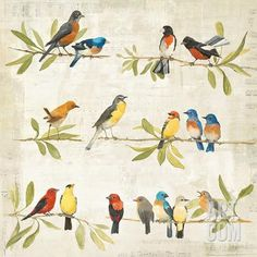 Adoration of the Magpie Music Art Print by Avery Tillmon at Art.com