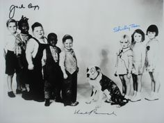 What ever happened to the Little Rascal named Chubsy Ubsy Little Rascals Quotes, Little Rascals Buckwheat, Kids Comedy, Classic Comedies, Celebrity Kids, Child Actors, Old Tv Shows, Vintage Dog, Classic Tv