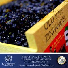 #HablemosdeVino  Zinfandel  El zinfandel es un vino característico de California. Las uvas, que son importantes para los viñedos californianos, producen un vino con una base frutada fuerte con tonos picantes. Este vino ha desarrollado la reputación de maridar bien con muchos platos populares, como la carne asada y la pizza. #WeLoveDeCortez