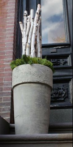 Winter planter with birch sticks. Birch Logs, Birch Branches, Garden Planters, Garden Art, Balcony Garden, Container Plants, Container Gardening, Bamboo Trellis, Winter Planter