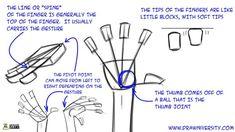 Drawing Hands Tutorial 02