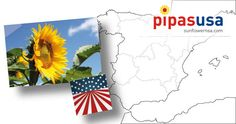 EE UU lidera las importaciones españolas de pipas