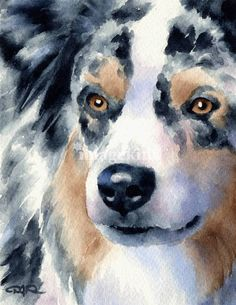 Australian Shepherd dog watercolor art print #decor #pets