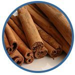Herbs and Spices for Dogs – The Good and The Bad