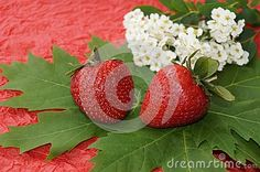 Strawberries and spring flowers on red background