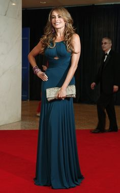 Celebrity Fashion At The White House Correspondents' Dinner Sofia Vergara Sofia Vergara, Stunning Dresses, Beautiful Gowns, Red Carpet Dresses, Blue Dresses, White House Correspondents Dinner, Red Carpet Fashion, Dress To Impress, Evening Dresses