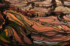 yuanyang,yunnan,china