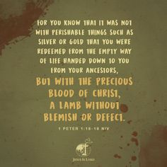 VERSE OF THE DAY  For you know that it was not with perishable things such as silver or gold that you were redeemed from the empty way of life handed down to you from your ancestors, but with the precious blood of Christ, a lamb without blemish or defect. 1 Peter 1:18-19 NIV #votd #verseoftheday #JIL #Jesus #JesusIsLord #JILWorldwide