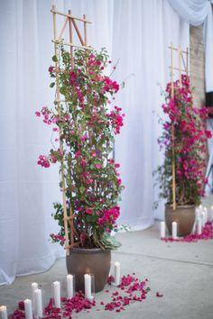 Bougainvillea Wedding Inspiration - Style Me Pretty Bougainvillea Trellis, Bougainvillea Wedding, Garden Trellis, Balcony Garden, Garden Gates, Garden Arches, Flower Dance, Arizona Gardening, Decoration Plante