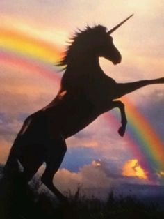 Unicorns are supernatural creatures. Just like gods and goddesses are not real so are unicorns. Black Unicorn, Real Unicorn, Unicorn Art, Magical Unicorn, Rainbow Unicorn, Unicorn Poster, Unicorn Horse, Beautiful Unicorn, Rainbow Art