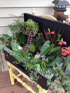 Fairy garden in an old suitcase!
