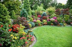 Garten verschönern - unterschiedliche Pflanzsorten