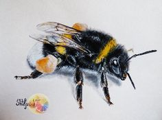 Bumblebee painting 8x12 acrylic painting on