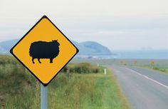 Irlanda, Isole Aran. Un segnale che indica il passaggio di pecore (foto Ente del turismo irlandese)