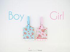 Gender Reveal Idea