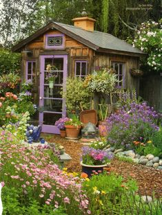 Garden shed/gardening ideas and inspiration