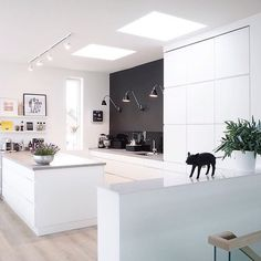 Just love this kitchen from @hege_ko ✨✨ What A Dream !! ✨✨ #instalove