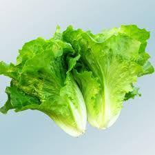 「蔬菜圖片」的圖片搜尋結果