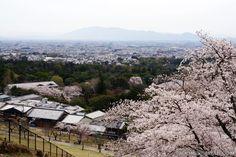 Accessing Mount Wakakusayama in Nara last month (April 2013).