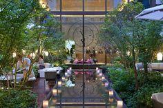 Hôtel Mandarin Oriental - Vue sur le jardin